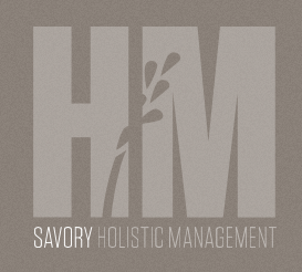 HolisticManagement